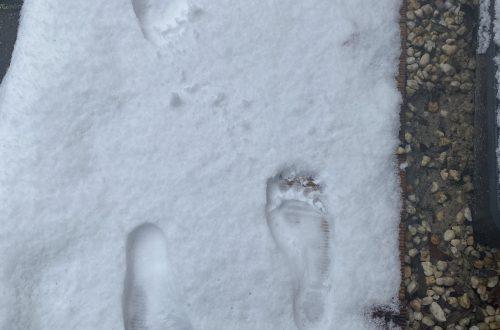 Fußspuren im Schnee vom Barfußlaufen